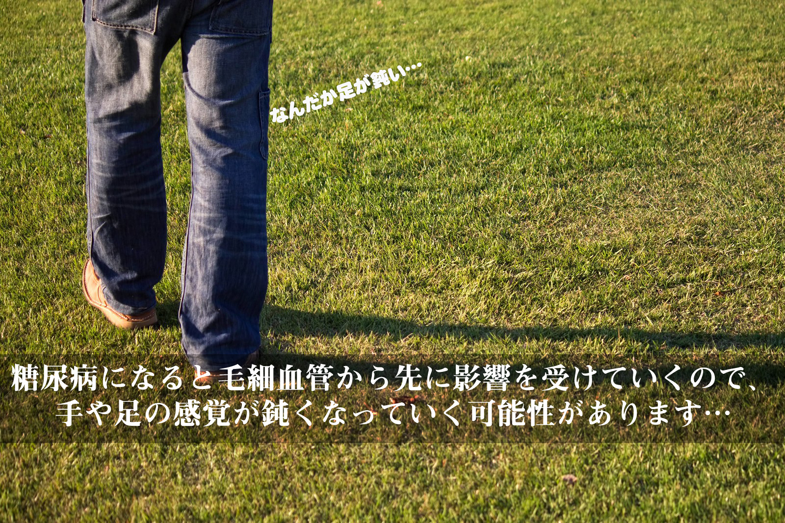 PPU_shibahutokage_TP_V